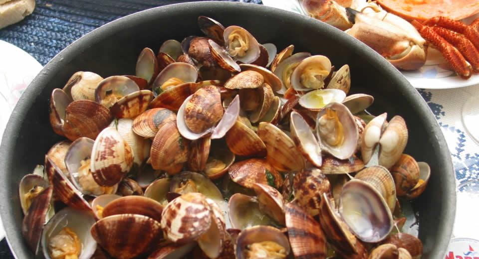 Eten en drinken in de Algarve, Portugal | Mooistestedentrips.nl
