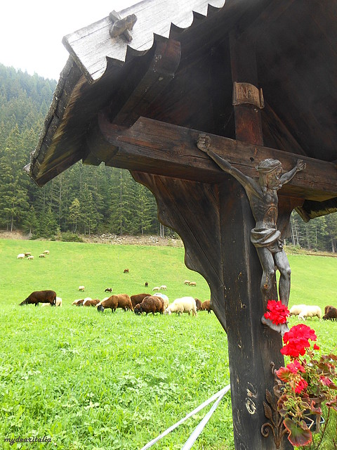 Transhumance in St.Gertraud, Ultental