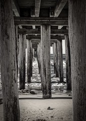 Under the Cayucos Pier 5 B&W