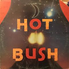 HOT BUSH:HOT BUSH(JACKET A)