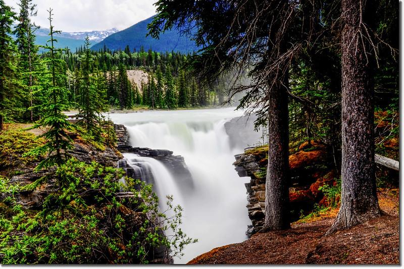 Athabasca Falls  (4)
