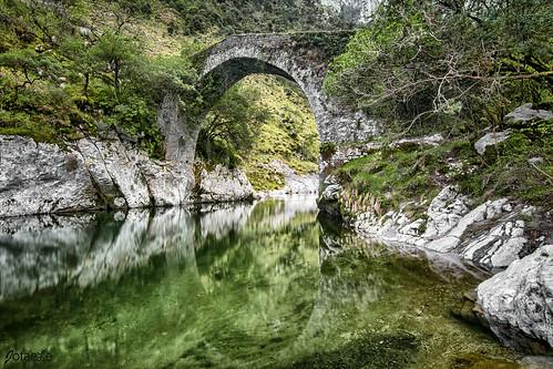 Puente romano La Vidre