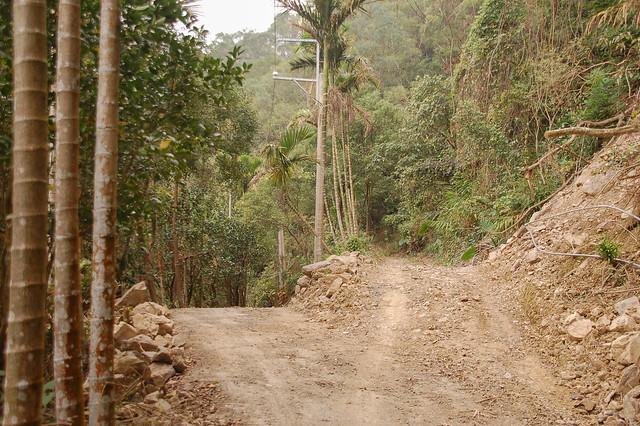 水泥路終點