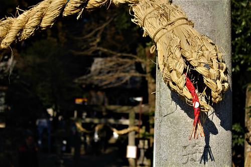 shimotsukehoshinomiya004
