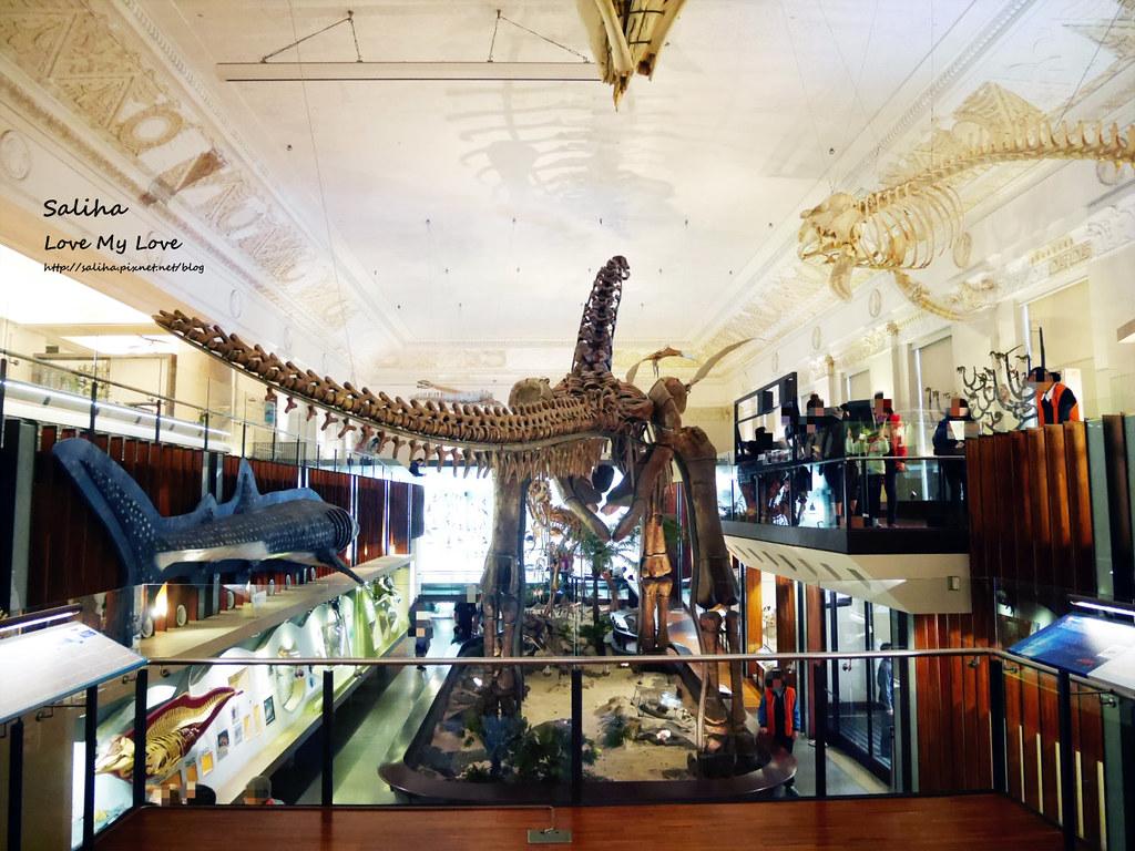 台北車站附近好玩親子景點恐龍博物館門票台博館土銀展示館 (8)
