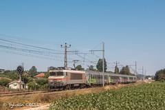 La BB 7399 file dans la paline commingeoise avec le14351 Toulouse - Bayonne