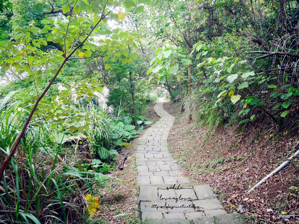 台北陽明山一日遊龍鳳谷附近好玩景點推薦硫磺谷 (3)
