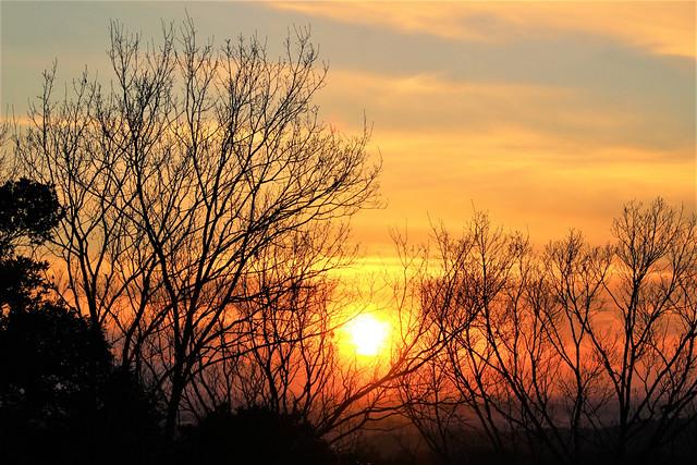 saimyouji-sunset018