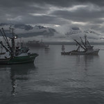 Alaskan Fishing Boats at Dawn by Richard White