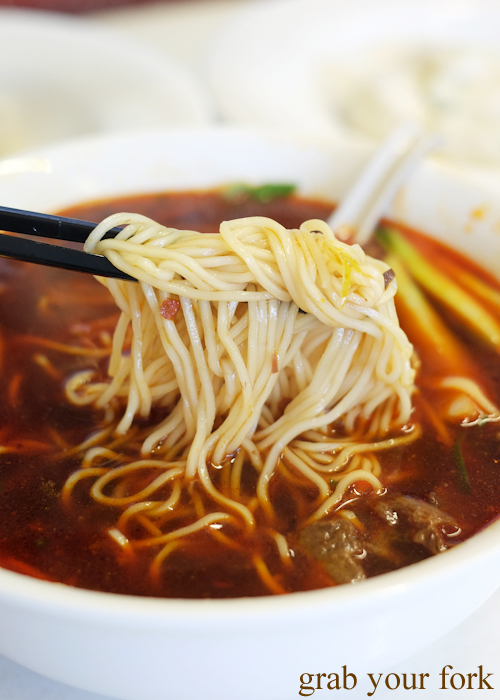 Noodle soup with hot spicy beef and beef tendon at Shanghai Dumpling in Ashfield
