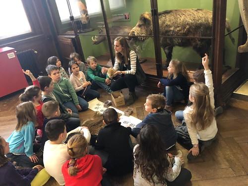 Naturhistorisches Museum 2a