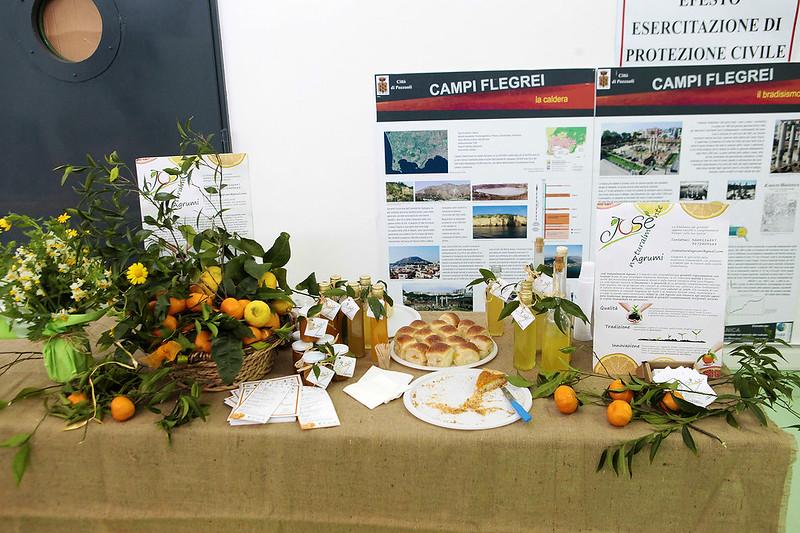 VII Festa del mandarino dei Campi Flegrei