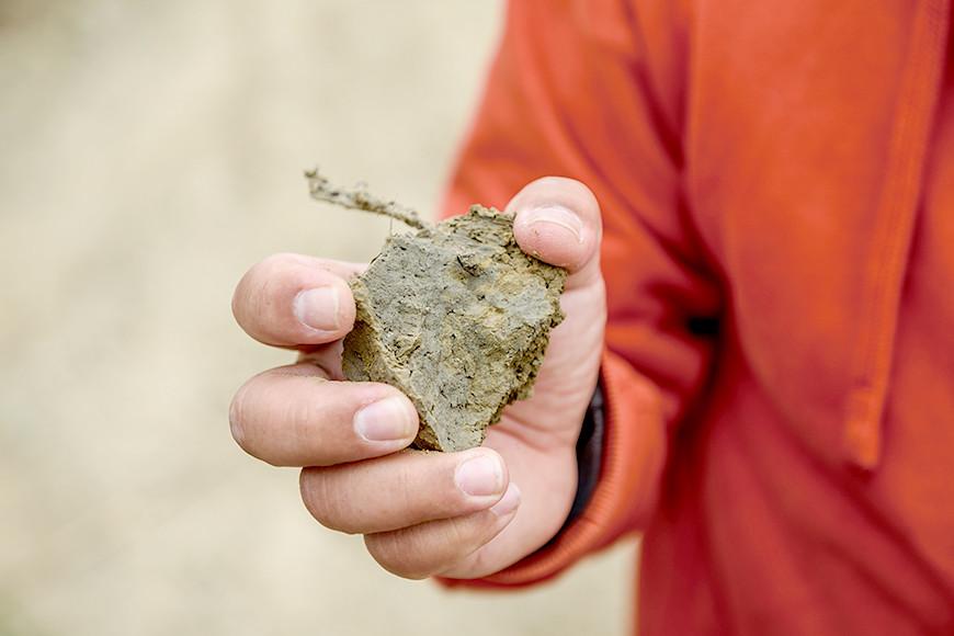 邱經堯拾起岸邊的泥塊,從上面滿布的許多微細孔可窺知池裡的豐富生物相。
