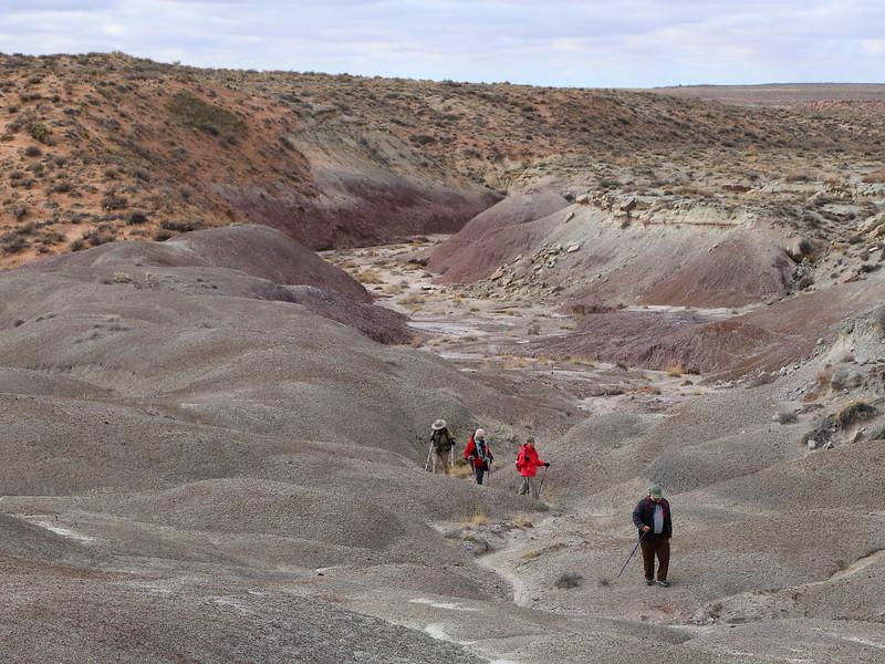 IMG_6193 Guided Backcountry Hike: Siltstone