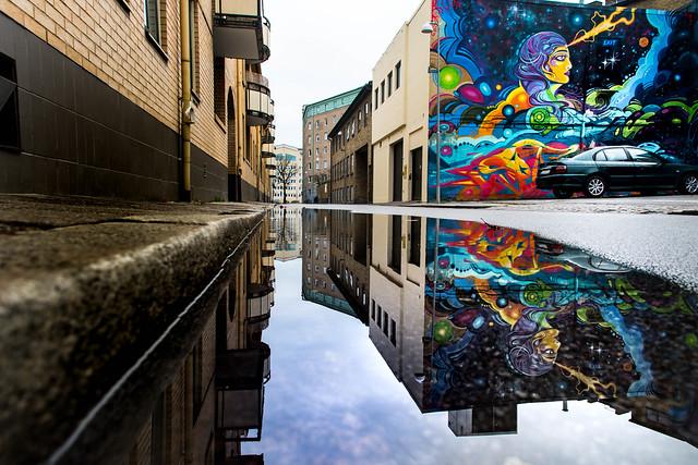Mural in puddle reflection, Nikon D5500, AF-S DX Zoom-Nikkor 55-200mm f/4-5.6G ED