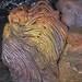 Crinière de lion dans les entrailles de La Fournaise