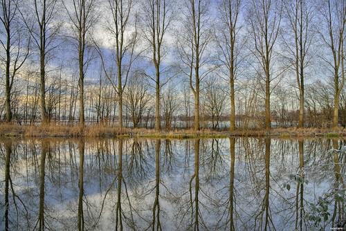 Gaanderen; Oude IJssel
