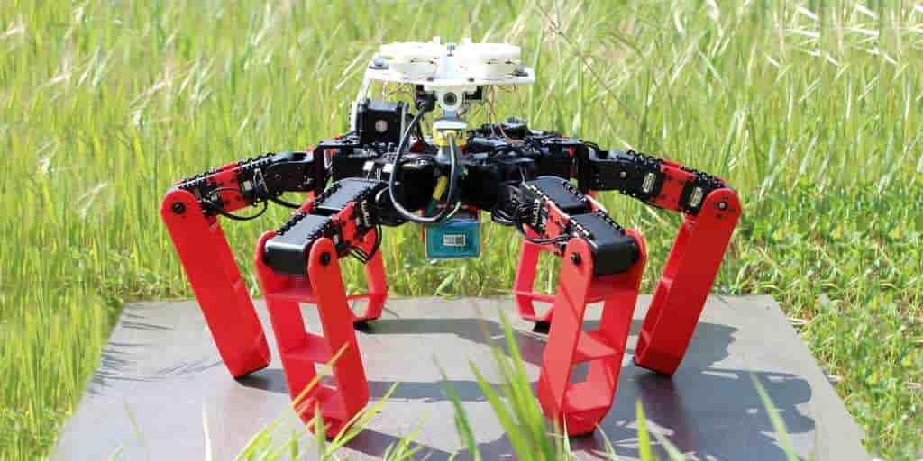 Le CNRS dévoile Antbot : un robot a 6 pattes sans GPS