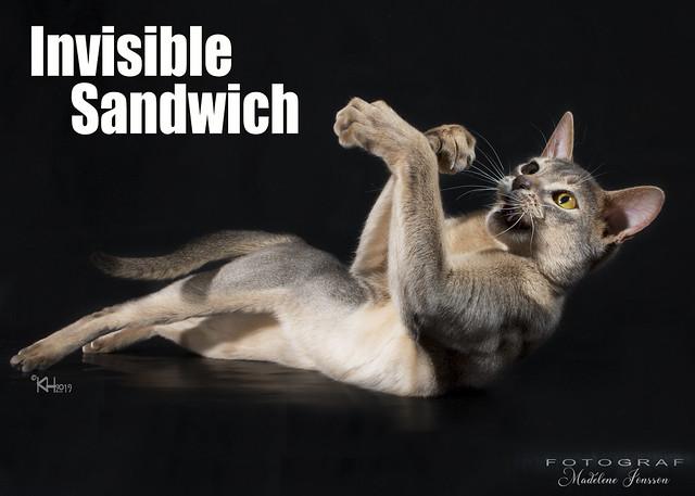 invisblesandwich