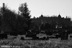 Graveyard - Streatham Cemetery