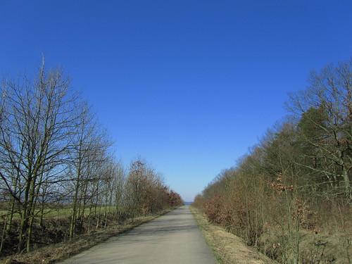 20110321 0208 043 Jakobus Weg Weite Wald