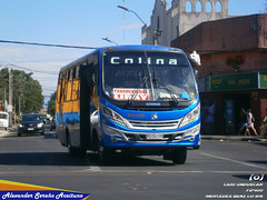 Damir (N°85): Caio Induscar F2400 - Mercedes Benz LO-916 (KSCL58).