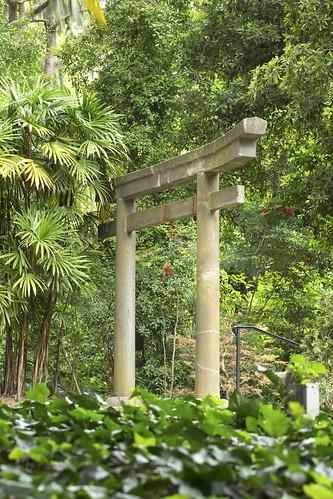 Torii Gate0374