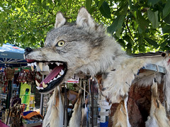 Wolf at Market
