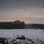Winter Landschaft - 2019:01:21 10:48:57 - Stolpe - Schleswig-Holstein - Deutschland