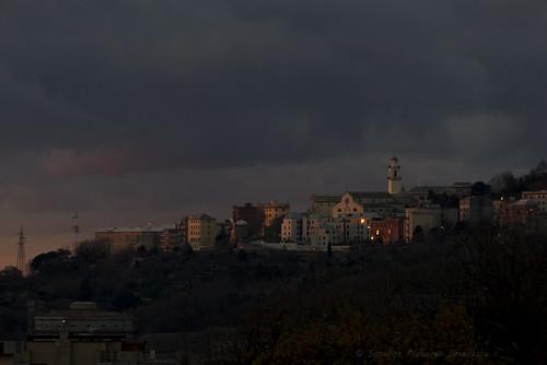 Dawn (Coronata)