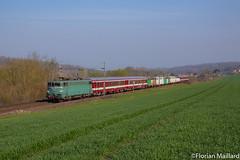 BB 25236 à Mareil-sur-Mauldre - Photo of Herbeville