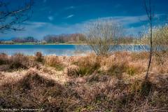 La Dombes et  l'un de ses étangs...