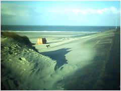 Holland_1_19