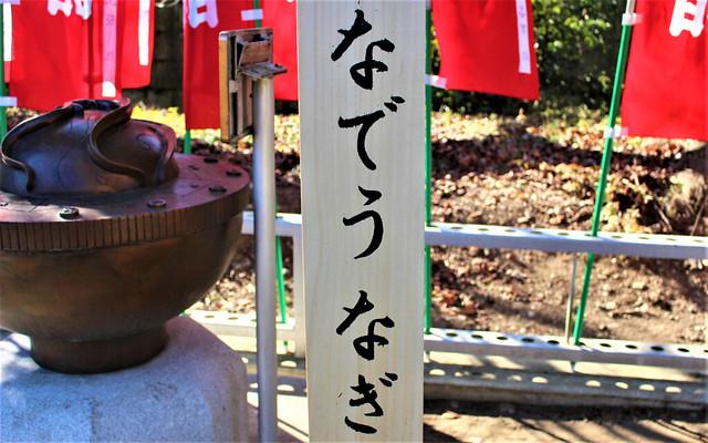 hirayanagihoshinomiyajinja007