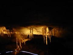 Carlsbad Caverns National Park 2018