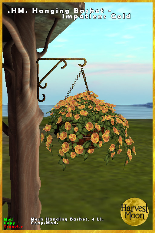 Harvest Moon – Hanging Basket – Impatiens Gold