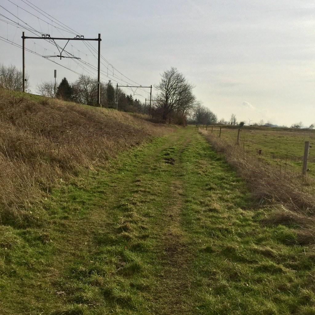 grasbaan langs het spoor
