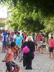 Carnival Street Essay