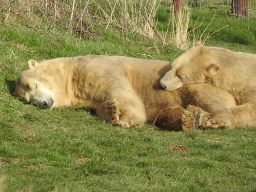 Soooooo comfortable!