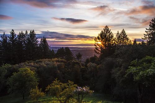 canon6d sunrise sky clouds landscape colour trees nature outdoors usa california