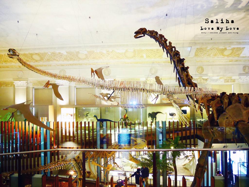 台北車站親子餐廳台灣博物館石尚恐龍主題餐廳恐龍咖啡館 (4)