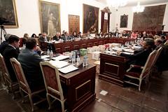 FOTO_Pleno ordinario 20 feberro 2019_16