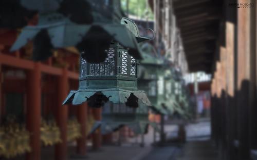 Kasuga Taisha Shrine - Nara (Japan)