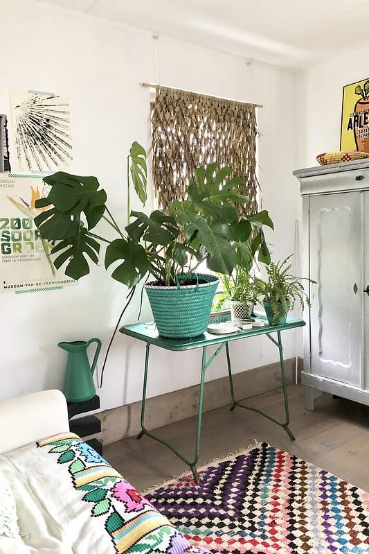 atelier plants