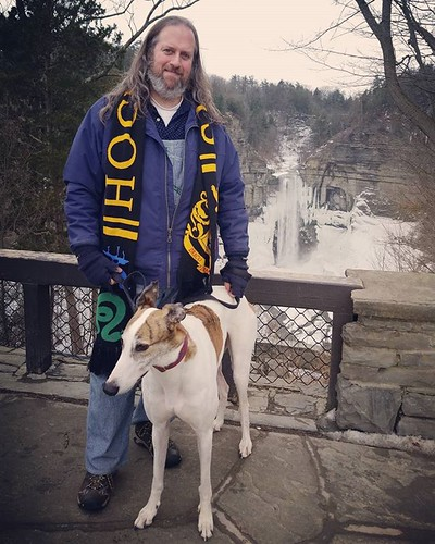 The Dee-oh-gee and me, Taughannock Falls #Cane #dogsofinstagram #greyhound #greyhoundsofinstagram #taughannockfalls #fingerlakes
