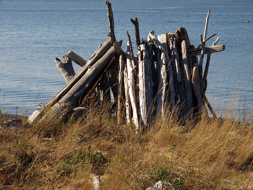 Driftwood shelter at Whiffen Spit, a walk on a spit of land extending out into the Pacific Ocean from Sooke on Vancouver Island, Canada
