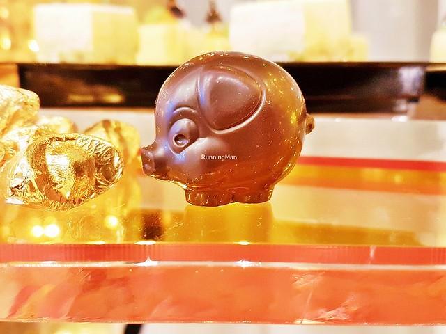 Chocolate Boar