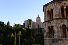 DAV_5576 Monasterio de San Pedro de Galligans
