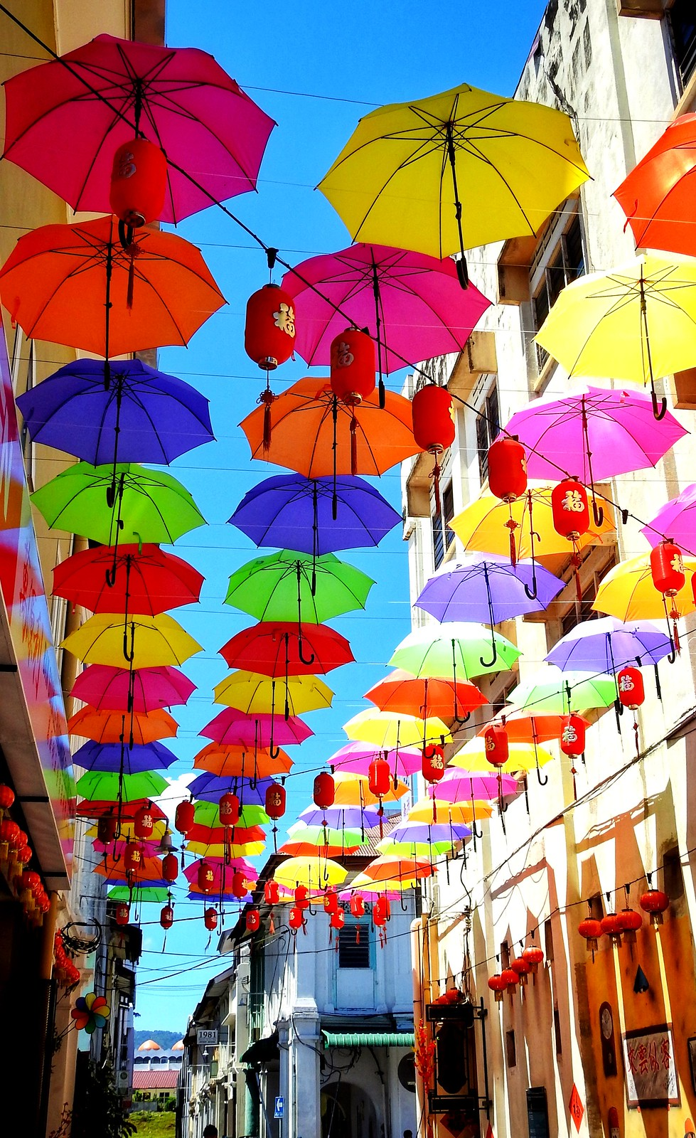 Umbrella.Colour