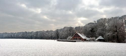 Snowscape in Woold - Achterhoek